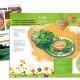 Brochure 24 pages / Illustrations et graphisme - Parc naturel du Gâtinais français